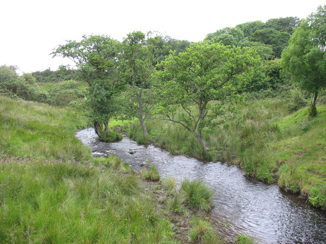 Afon Cegin upstream of Pont Felin