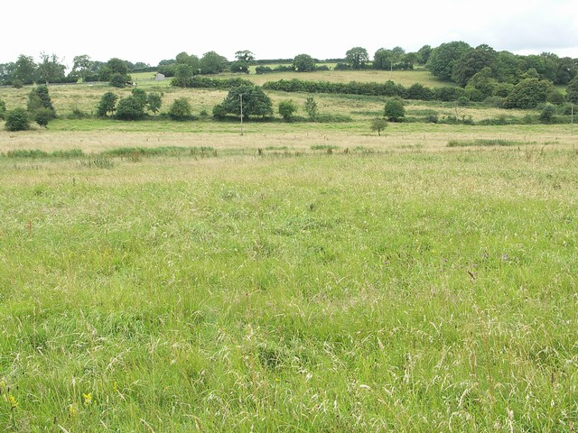 Across the Fields at Higher Waterston