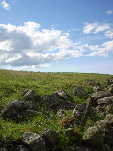 The Braeside of Arn Hill