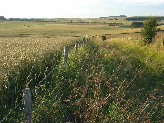 Farmland near Stonehenge