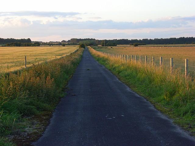 Farm road, Durrington Down