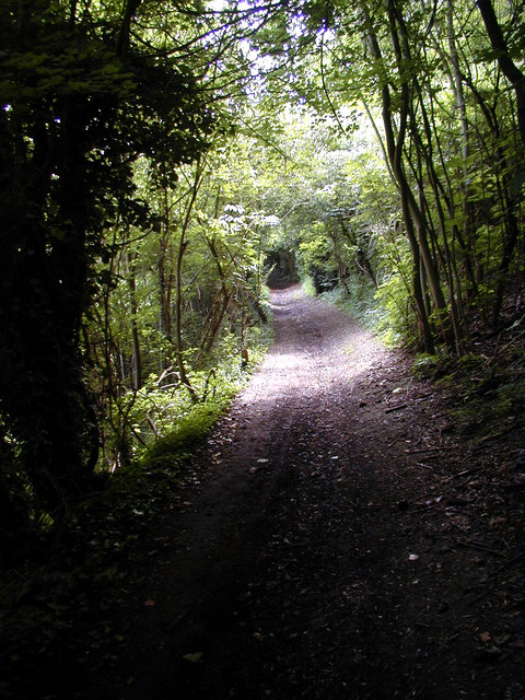 Pilgrim's Way, Trottiscliffe
