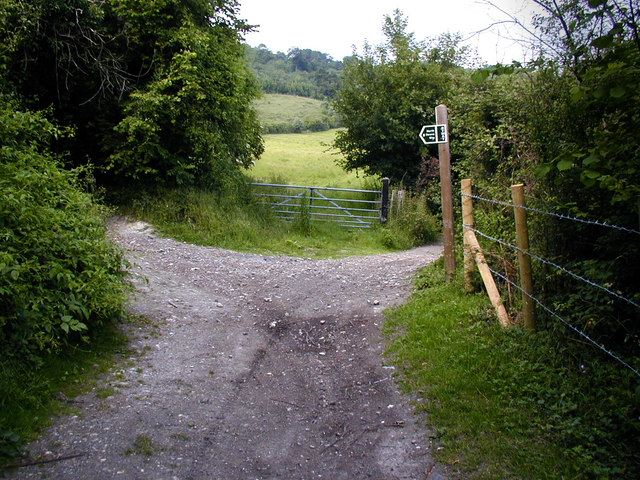 North Downs Way left, Pilgrim's way right