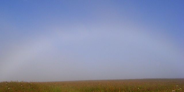 Fogbow, Lower Everleigh