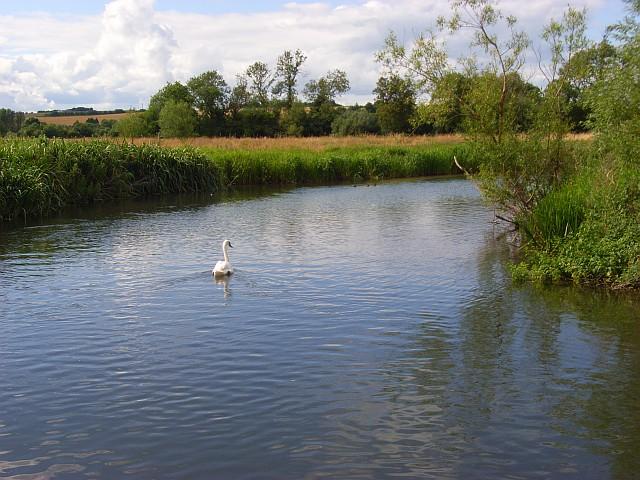 The River Wylye