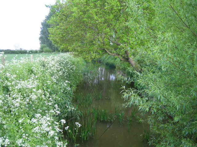 Claydon Brook near Addington 2