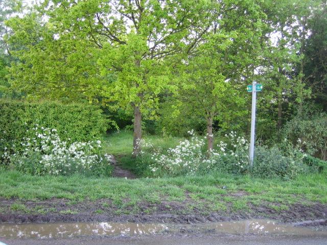 Footpath near Steeple Claydon 2