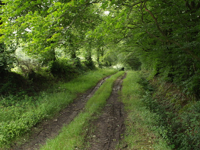 Track to Higher Whiddon