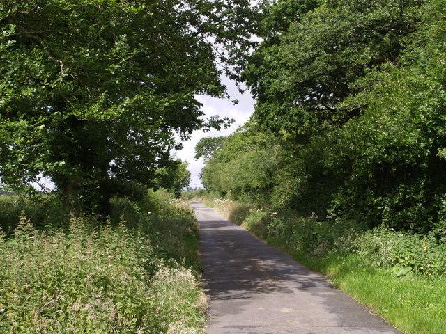 Lane past Whiddon Moor