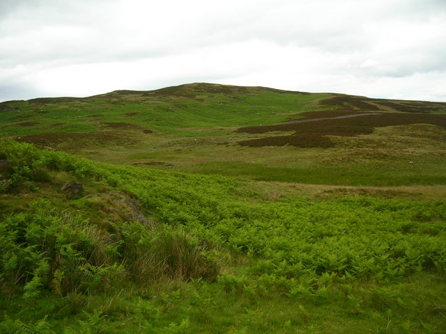 Moorland above Potter Tarn