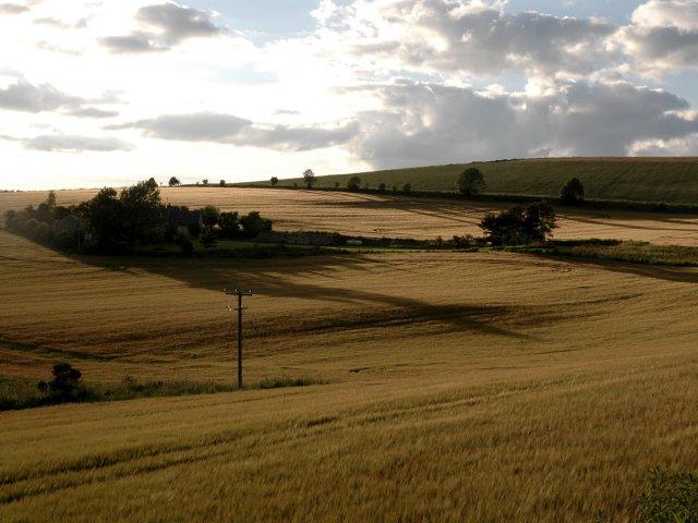 Barley Fields Near Towhaugh