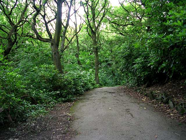 Footpath from Wilton Park leading to Bagshaw Museum