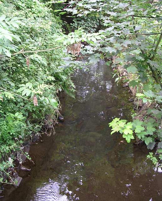 Beck running under Floreat Close