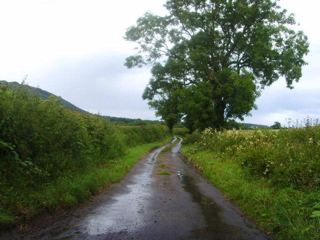 Morrell's Wood Lane