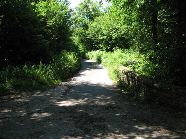 The lane to Panta Farm