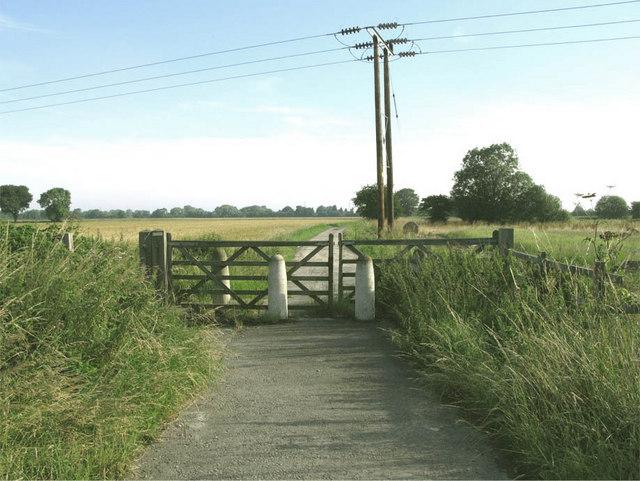 Newland, New Lane