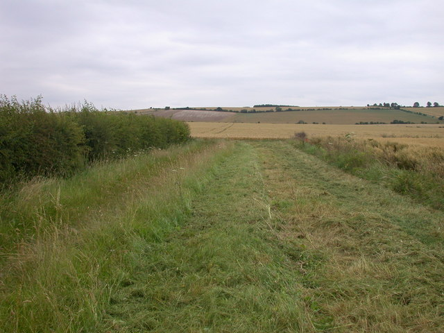 Glittering byway to nowhere