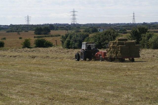 Hay-making at Melling