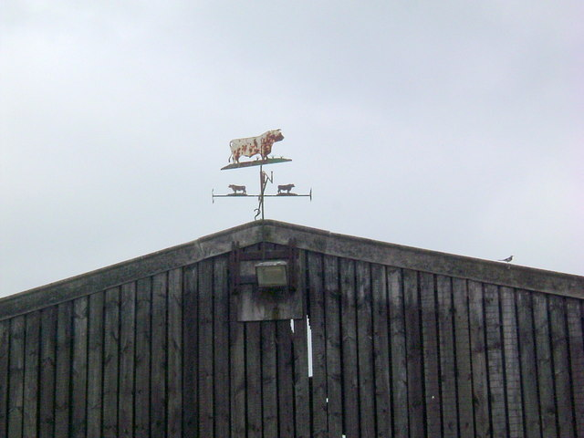 Agricultural weathervane