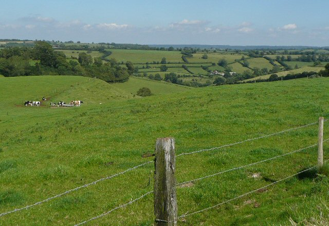 Looking down the valley, Ellingham wood on the left.