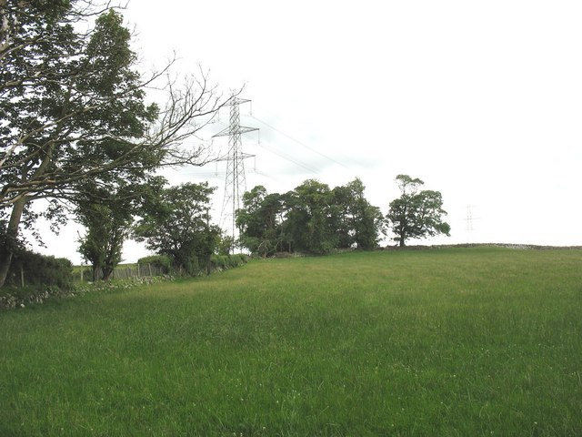 A triangular piece of woodland on a knoll seen from the road