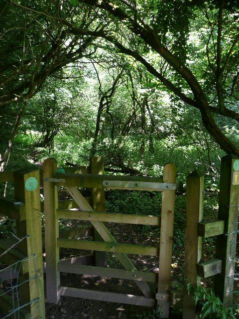 The Gate to Asham Wood