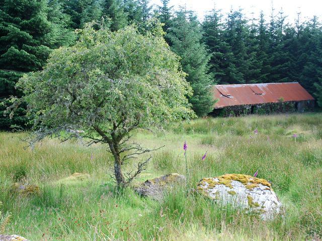 Barn at Uillian