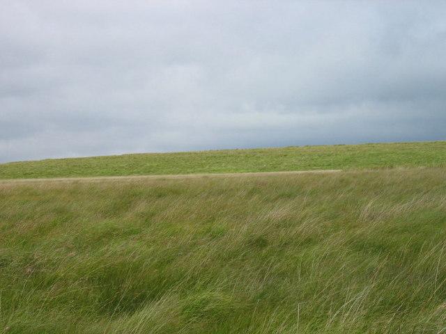 Round Rigg from road near Spadeadam