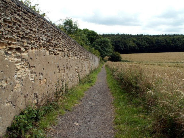 Boundary Wall of Walton Park