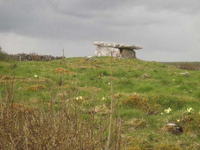 Poulaphuca Megalithic Wedge Tomb
