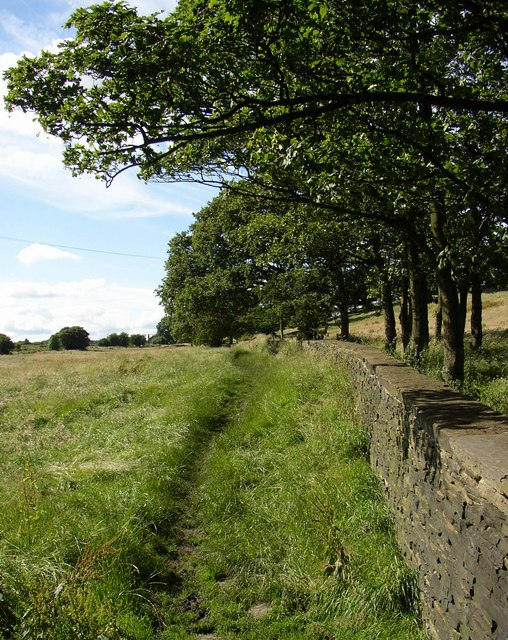 Footpath off Northedge Lane, Coley