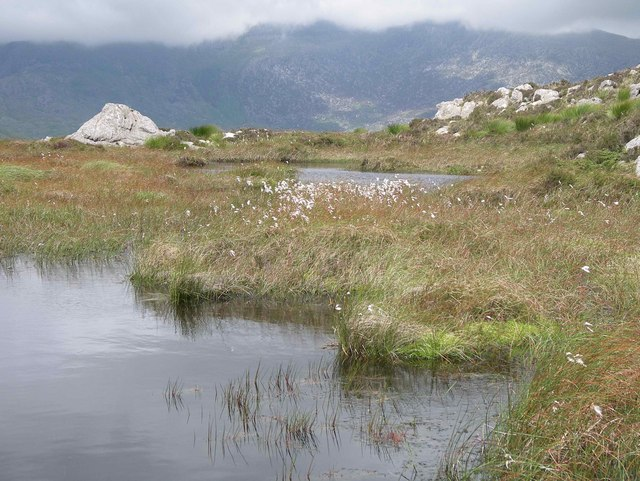 Peat pool on Cerrig Cochion