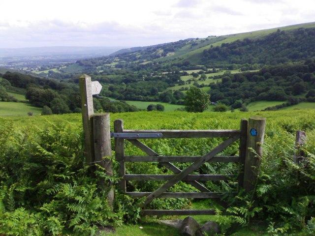 Bridleway towards Dyffryn