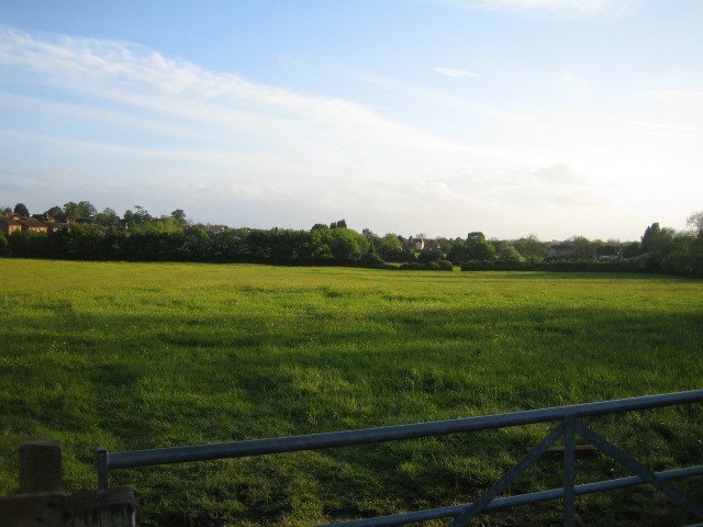 Field and edge of village, Steeple Claydon 2