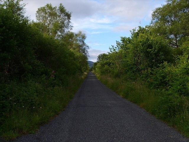 Minor Road to Auchinleck Farm