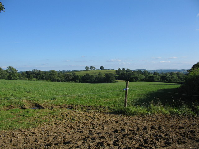 Farmland off Copplesbury Lane