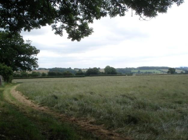 Hay field near Upper House Farm