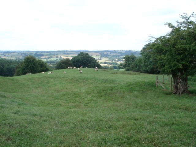 Sheep pasture on Upper House Farm