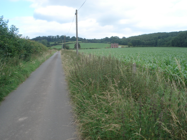 Entrance road to Underley Farm