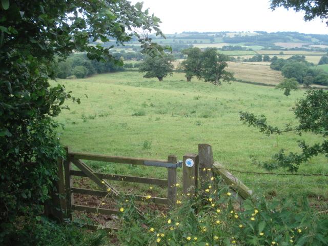 Bridleway near Cwmwood Farm