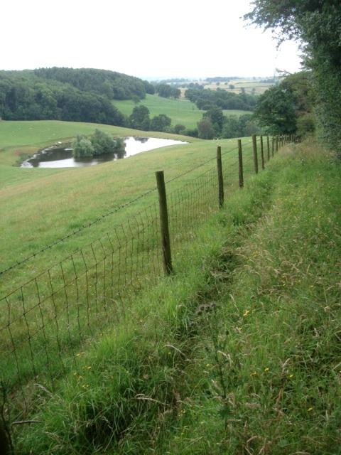 Footpath and pond near Cwmwood Farm