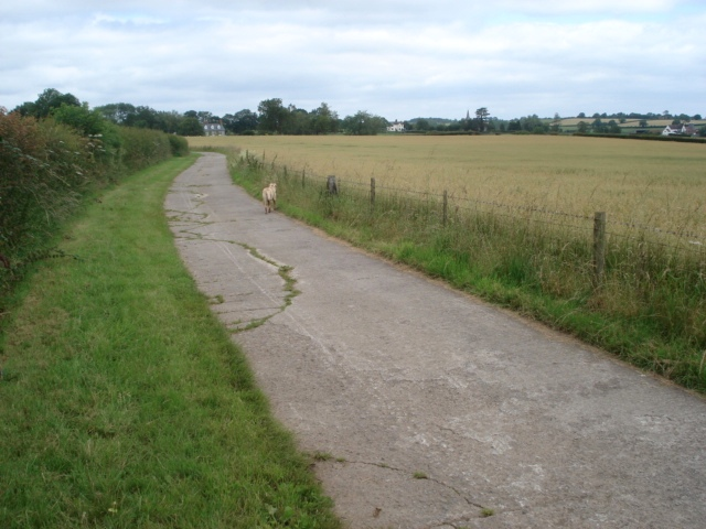 Farm track near Upper House Farm