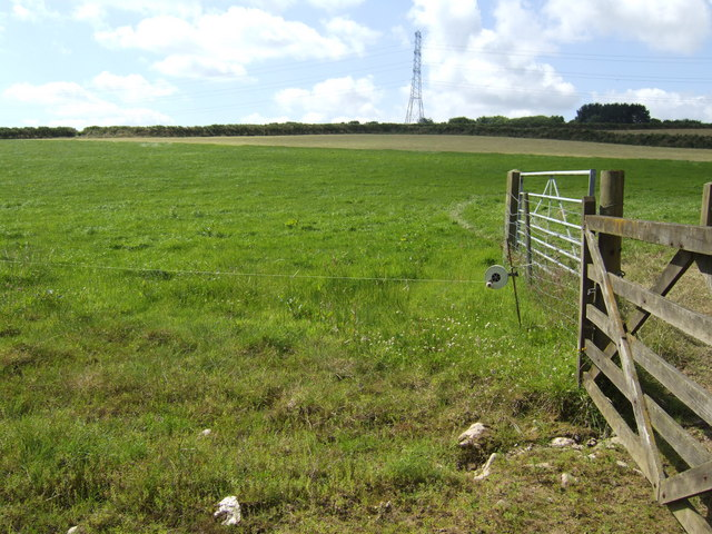 Electrified grazing land