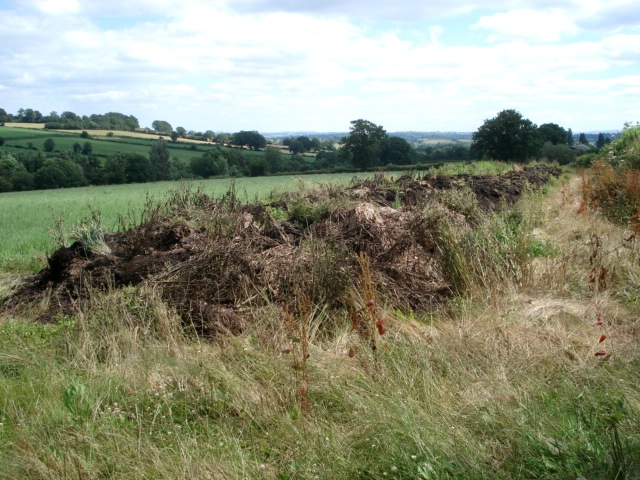 Dung pile at Pool House Farm