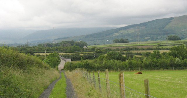 Grassy lane to Brithdir Mawr
