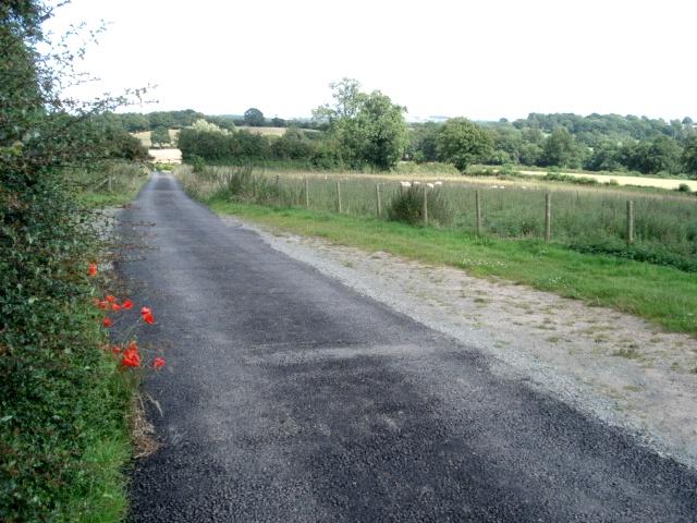 Farm track to Kyrebatch Farm