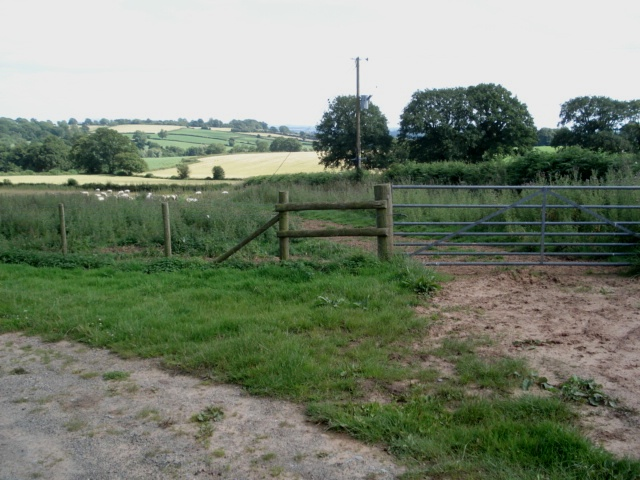 Pasture land and wheat fields at Kyrebatch Farm