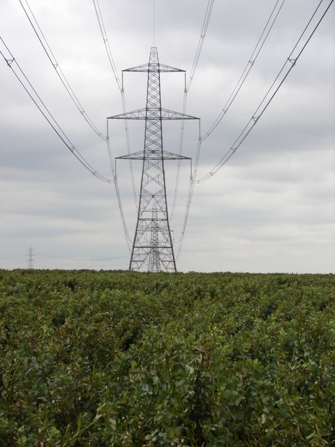 Pylons looking North-West