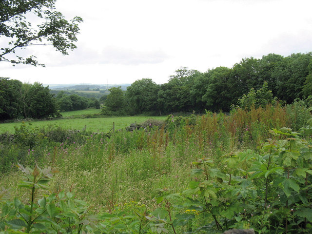 View west across fields from Lon Plas