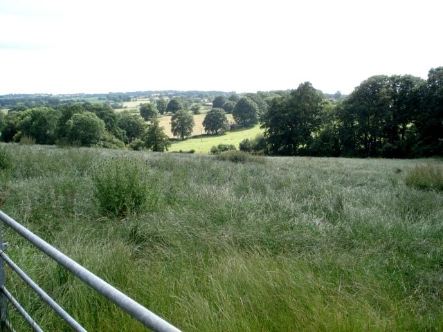 Hay Field near Manor Farm